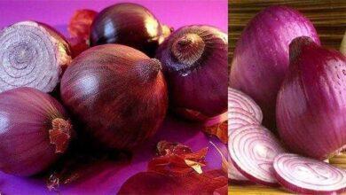 Foto de Depois de saber disto, você vai querer comer cebola roxa todos os dias! Veja…