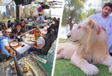 Foto de 13 razões que provam que Dubai é o lugar mais extravagante do mundo