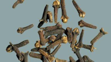 Foto de Aprenda a reduzir os níveis de triglicerídeos usando cravo e canela