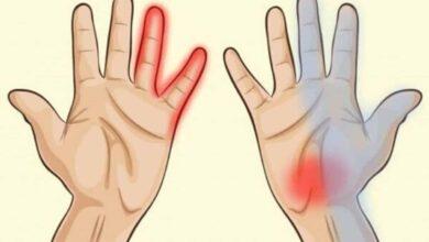 Conheça 7 coisas que as mãos dizem sobre a saúde