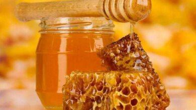 Foto de 7 usos surpreendentes do mel de abelhas