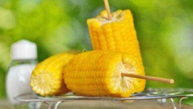 Foto de 9 Benefícios do milho que você precisa saber