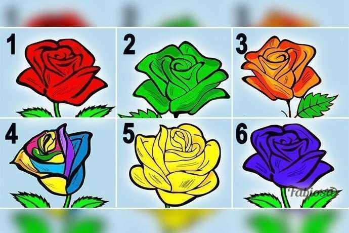 Escolha a rosa que mais te agrada e segredos sobre a sua personalidade serão revelados d