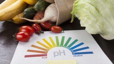 Photo of Os 25 alimentos alcalinos que você deve comer para evitar câncer e outras doenças.