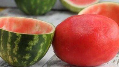 Foto de Surpreenda os amigos! Veja como servir uma melancia sem casca