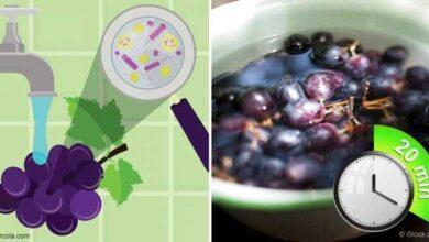 Foto de Uma maneira muito simples de eliminar os agrotóxicos dos vegetais