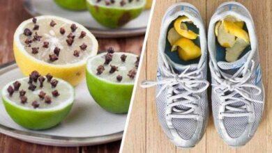 12 Razões pelas quais o limão é uma das frutas mais úteis do mundo hs