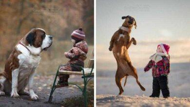 Foto de 20 imagens incríveis de crianças e seus cães de estimação