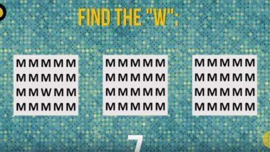 você consegue encontrar as letras S