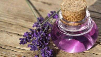 8 benefícios do óleo essencial de sálvia
