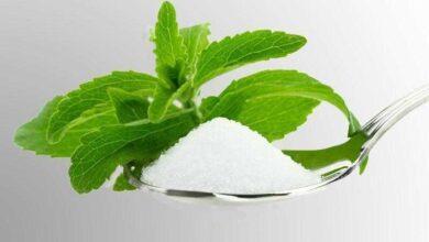 Foto de Já conhece a stevia, o açúcar que não faz mal?