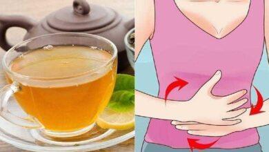 Remédios Caseiros Para Gastrite 4