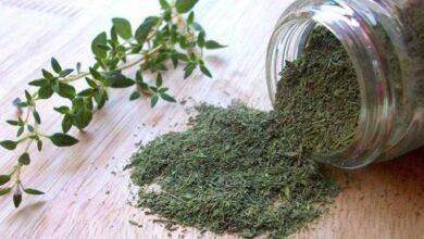 Benefícios do tomilho para a saúde e como usar
