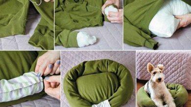 Foto de Recicle roupas usadas com dicas de artesanato