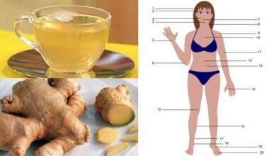 5 motivos para você beber chá de gengibre, sempre que possível