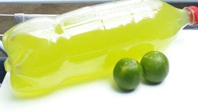 Como fazer desinfetante caseiro com casca de limão