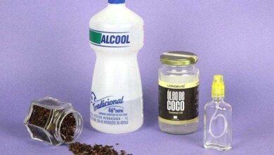 Foto de 11 receitas de repelente caseiro para insetos