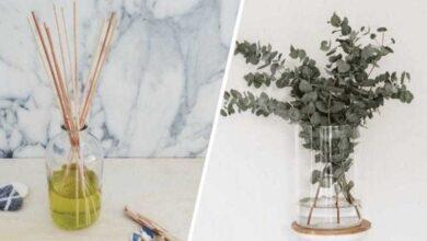 5 maneiras de deixar sua casa bem cheirosa
