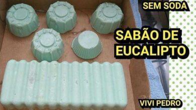 Foto de Como fazer SABÃO DE EUCALIPTO SEM SODA