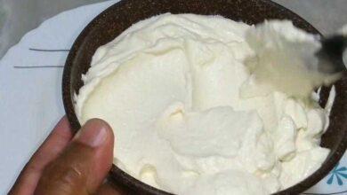 Como fazer cream cheese caseiro fácil
