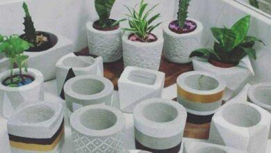 Foto de Como Fazer Vasinhos de Cimento para Suculentas
