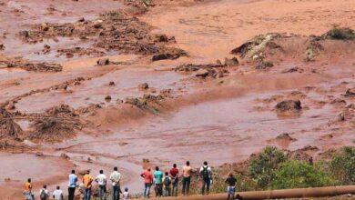 Socorristas comemoram ao encontrar cerca de 50 pessoas vivas ilhadas em Brumadinho