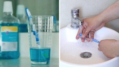 Foto de 10 Dicas para limpar escova de dentes