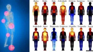 Foto de 19 Dores no corpo que podem estar ligadas às emoções