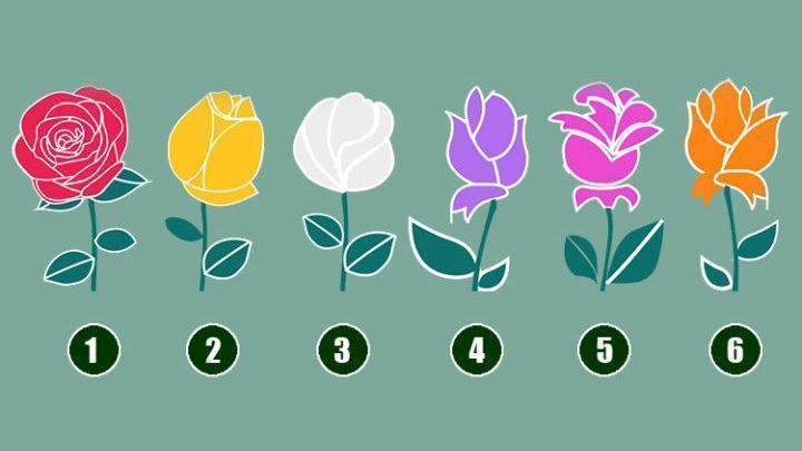 Escolha uma Rosa e depois leia a promessa de Deus em sua vida