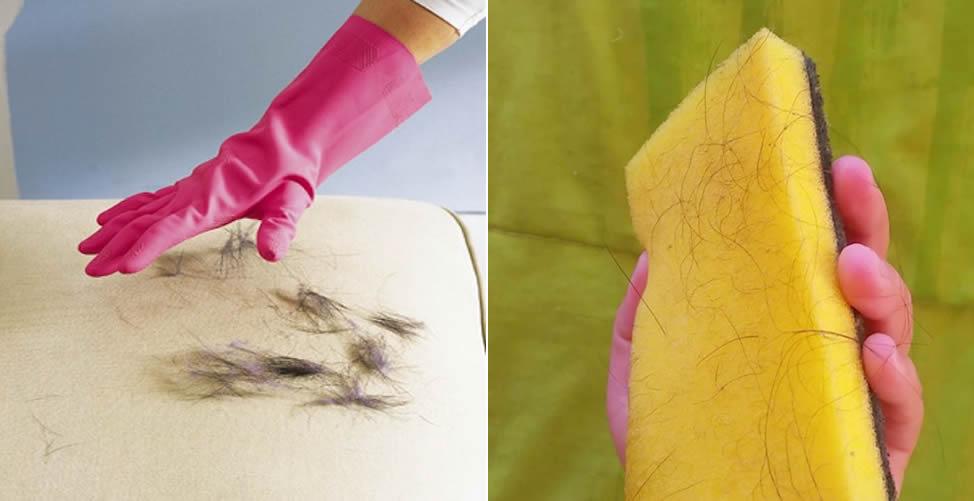 Como Remover Pelos de Animais do Sofá