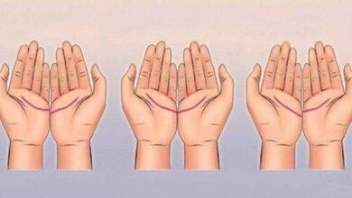 Olhe para as linhas de união de suas mãos e descubra seu futuro amoroso