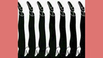 Desafio: quantas pernas você vê na foto?