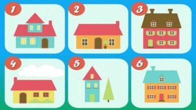 Escolha a casa ideal para si e descubra mais sobre seus sentimentos