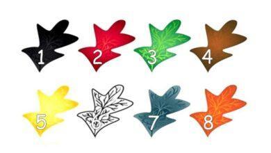 Escolha uma cor e descubra mais sobre sua personalidade
