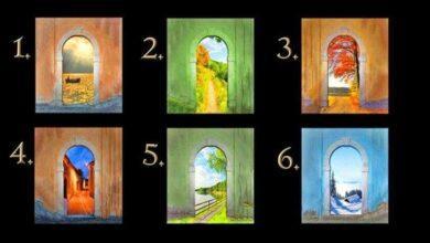 Qual caminho você escolhe? Sua decisão revelará seu futuro!