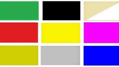 Qual é sua cor favorita? Ela revelará quem você é