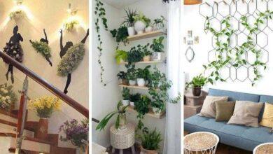Foto de 18 Ideias belíssimas com plantas para se inspirar