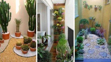 Foto de 23 Ideias maravilhosas de jardim de inverno para se inspirar