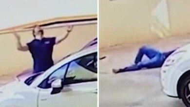 Foto de Cachorro cai do nono andar – e a câmera de segurança flagra uma cena inesperada