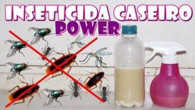 Receita caseira super forte para acabar com moscas, pernilongo, formigas e baratas e