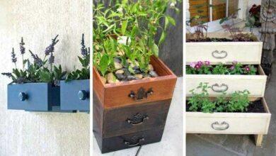 Foto de 7 Ideias criativas para reaproveitar gavetas de móveis antigos