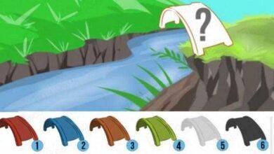 Foto de Teste de Personalidade: De que cor você pintaria a ponte?