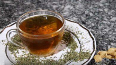 Chá de orégano com gengibre: confira os vários benefícios para a saúde