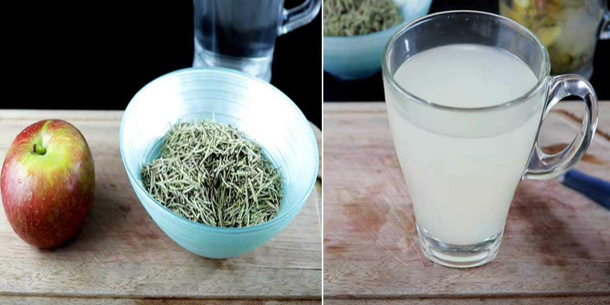 Ferva maçã com alecrim e confira os incríveis benefícios deste chá