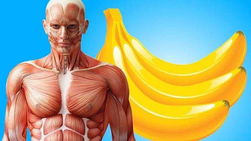 10 Problemas que a banana resolve melhor que remédios