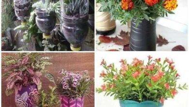 Ideias de Vasos com Garrafas PET
