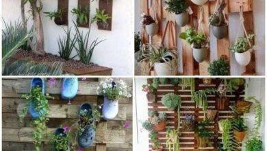 Ideias de jardins verticais para inspiração