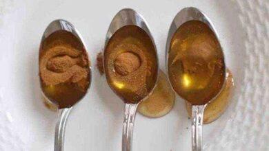 10 doenças que podem ser evitadas com canela e mel s