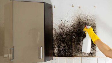 Foto de 5 maneiras práticas e infalíveis de tirar mofo