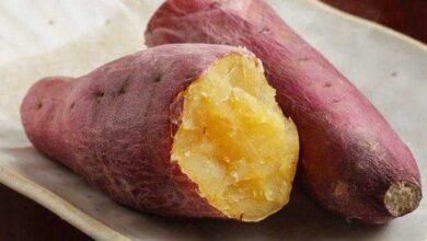 Batata doce previne diabetes, cegueira, e ajuda perder peso, aprenda